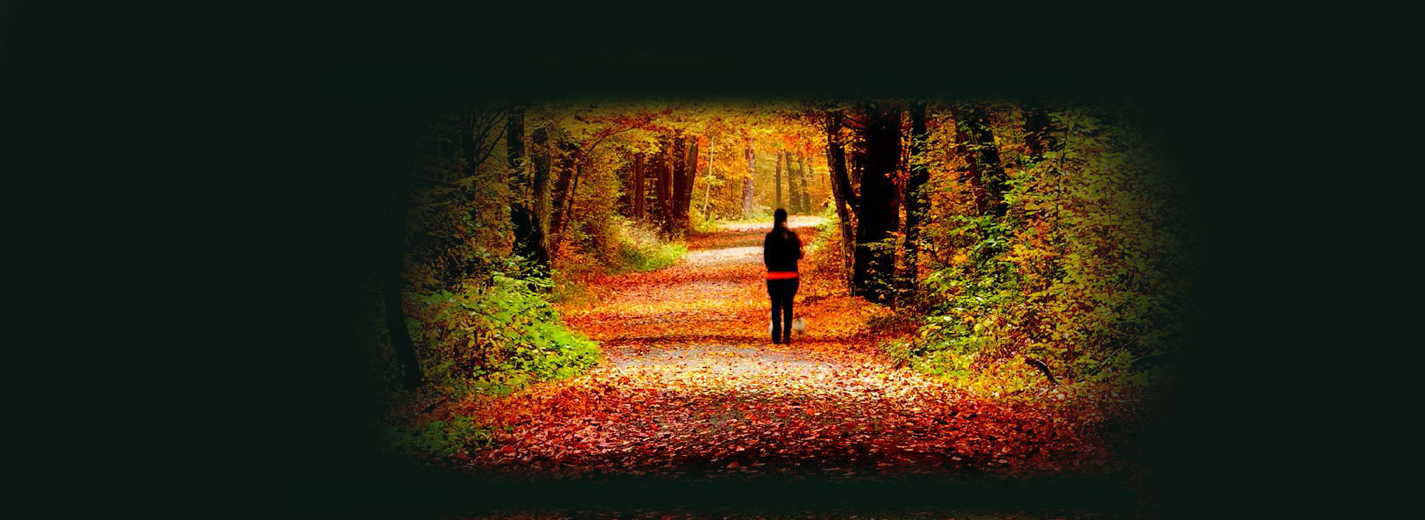 Find Your Path! Check Out Our Fall Non-Credit Course Offerings.